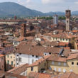 Lucca – 55 km